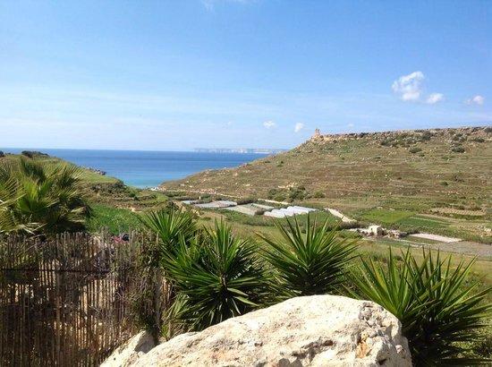 Merill Eco Tours: Breathtaking view!