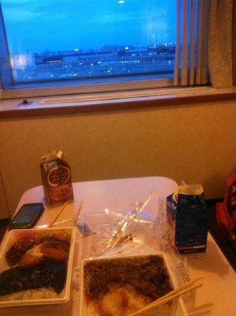 Narita Airport Rest House: view from room