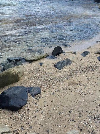 Tamarind Reef Resort, Spa & Marina: Strand??????????????????