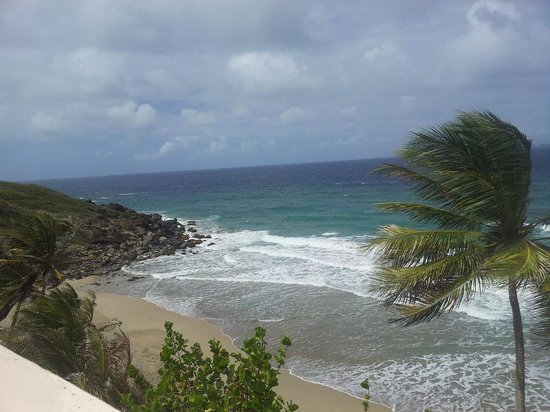 Petite Anse Hotel Grenada: The beach just a few feet from the hotel - great for swimming!