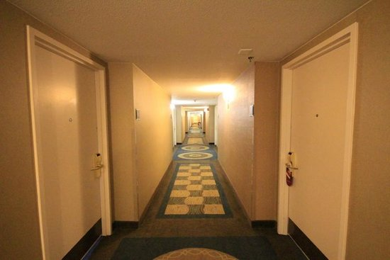Crowne Plaza Memphis Downtown: Hallway