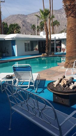 Palm Springs Rendezvous: The pool, what a stunning view!