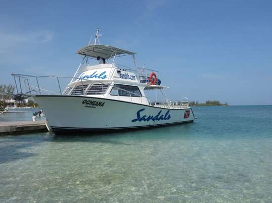 Sandals Royal Caribbean Resort and Private Island: Diving excursions