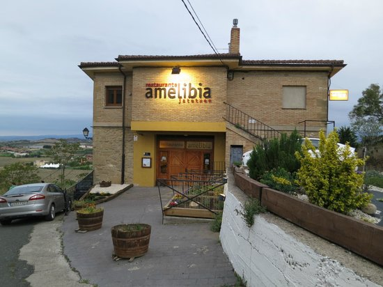 imagen Amelibia en Laguardia