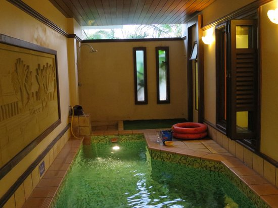 Garden pool villa private swimming pool picture of for Garden pool grand lexis