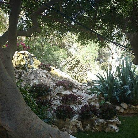 Radisson Blu Hotel, Doha : a view of garden