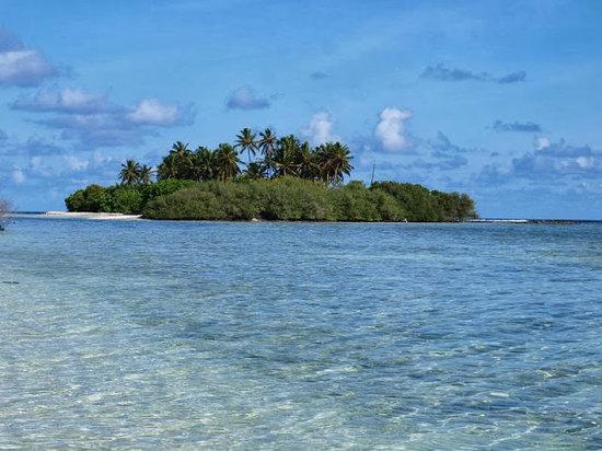 Dacha Maldives: Surrounding