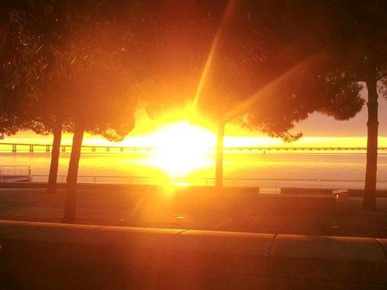 Vasco da Gama Bridge : Bridge during sunrise