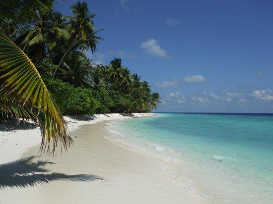 Filitheyo Island Resort: vue plage
