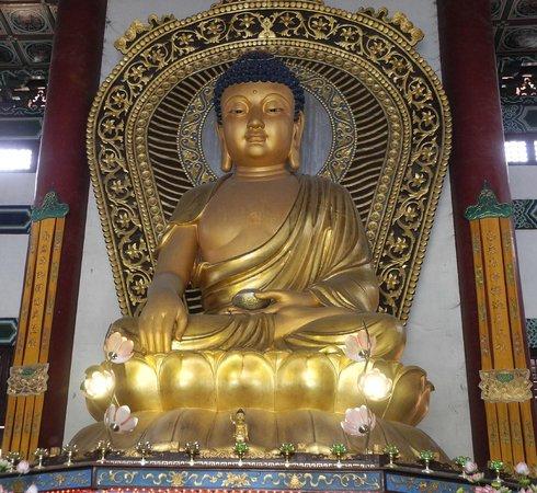 Gautam Buddha  Idol  inside the  Chinese Monastery