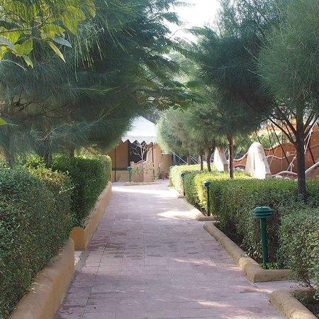 Infinity Resort Rann of Kutch : paths to rooms