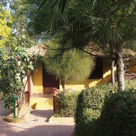 Infinity Resort Rann of Kutch : accomodation