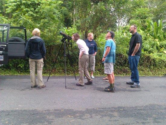 Cabinas Tropical: Jungletour