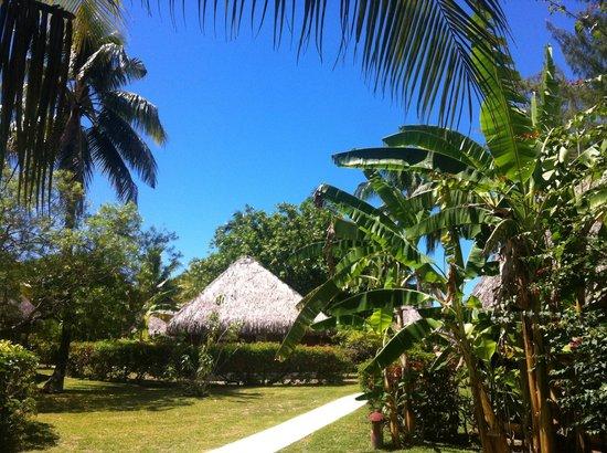 Hotel Les Tipaniers: bungalow