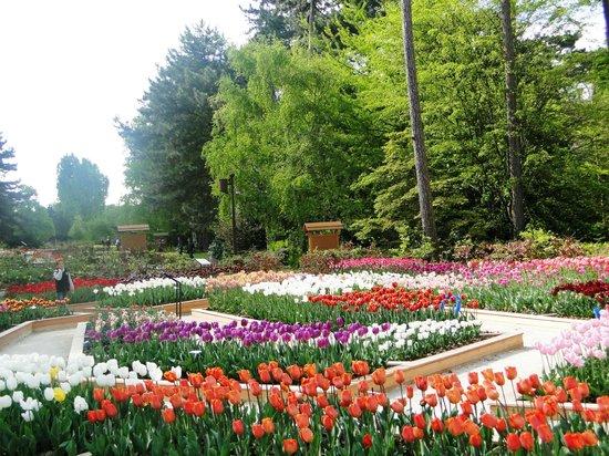 Parc Floral Bois De Vincennes > Parc Floral de Paris Picture of Parc Floral de Paris, Paris TripAdvisor