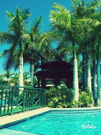 Green Garden Resort & Suites: vue de la piscine