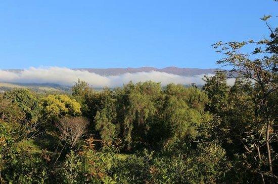 Kula View: Haleakala depuis la terrasse