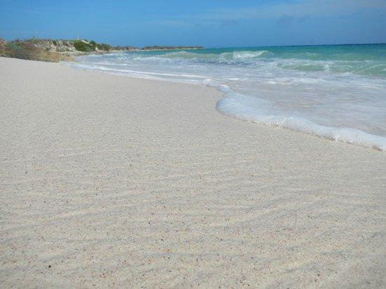 Santa Barbara Beach & Golf Resort, Curacao : Beach along golf course