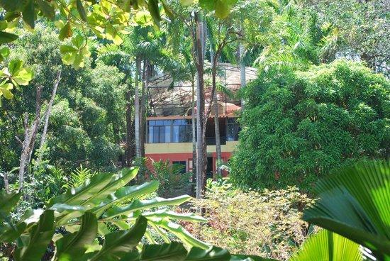 Condotel Las Cascadas: suite canopy avec balcon