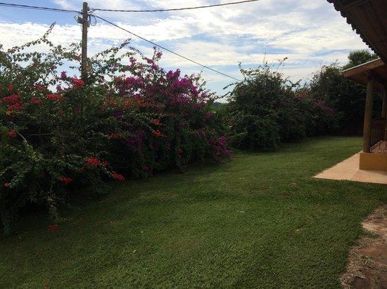 Santa Clara Eco Resort: Vista dos quartos do Master Colonia, onde aceitam cachorros