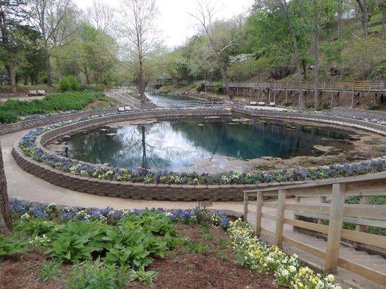 Blue Spring Heritage Center: Blue Spring