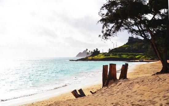 Kailua Beach Park : 素晴らしい
