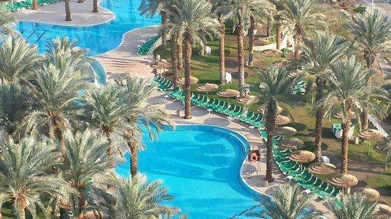David Dead Sea Resort & Spa : fresh water pool outdoors