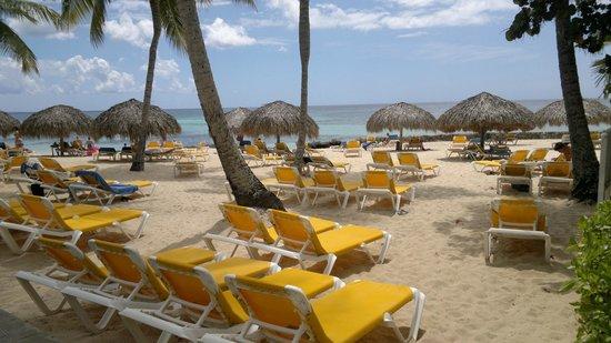 Viva Wyndham Dominicus Beach: EXCELENTE DESCANSO