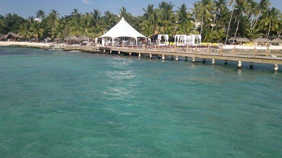 Viva Wyndham Dominicus Beach: DESDE EL CATAMARAN!!!