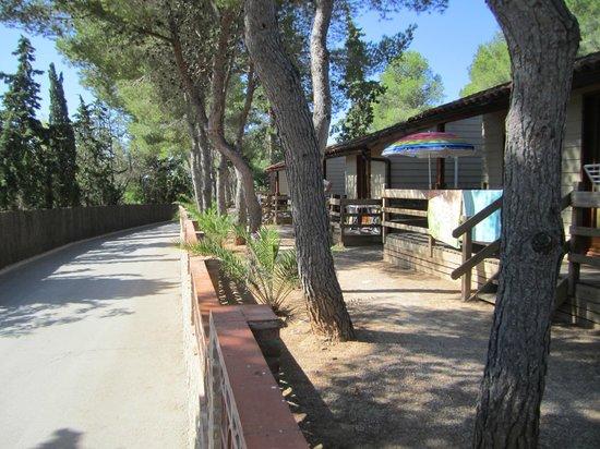 Vilanova Park: Chalet S600 environnement
