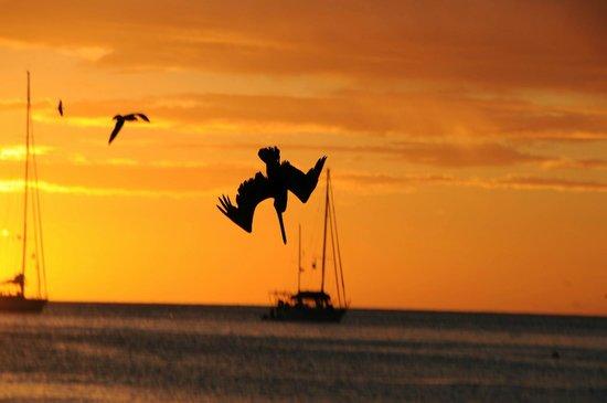 Posada Lagunita : Vacanza meravigliosa
