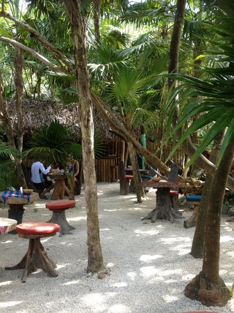 Il Barino Tulum Juice & Co: Great outdoor space to enjoy your great coffee, smoothies, and breakfast!