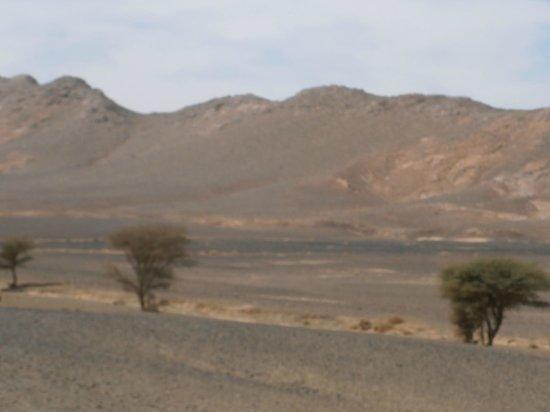 Moroccan Sahara : vieuw after Taouz,direction Zagora