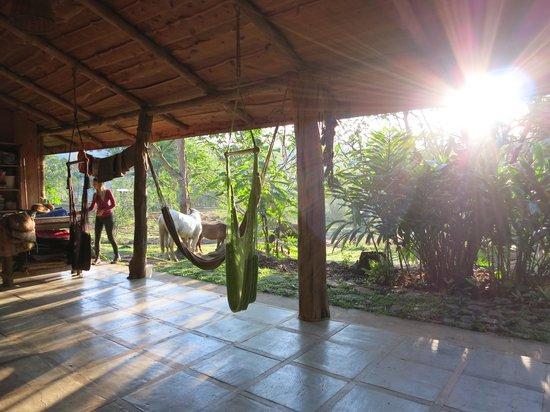 Barking Horse Farm: The porch/living room/tack room