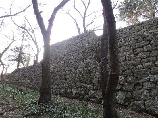 村上城跡, 本丸跡