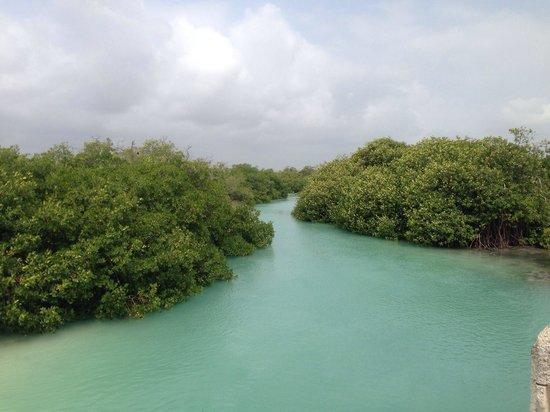 Sian Ka'an Biosphere Reserve: Laguna