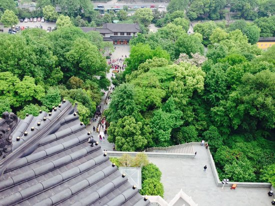 Leifeng Tower: 最上階から見た景色