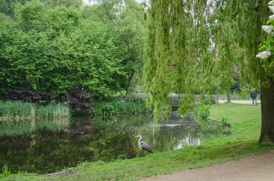 Vondelpark: One of the park's many lakes