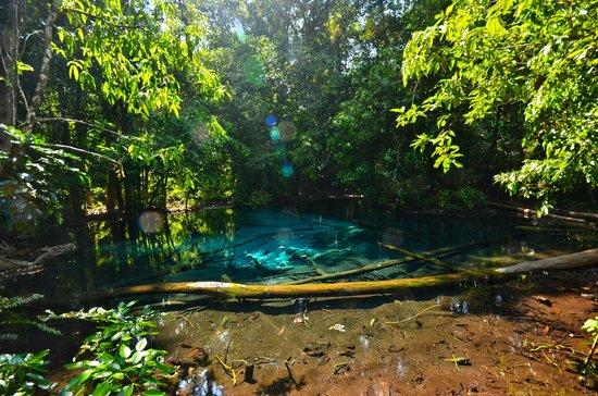 Emerald Pool (Sa Morakot) : blue pool