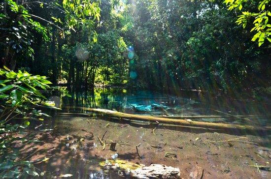 Emerald Pool (Sa Morakot) : beautiful pool