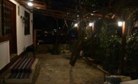 Alya Pansiyon: Bahçe