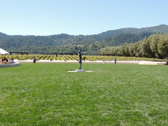 Robert Mondavi Winery: Vineyard