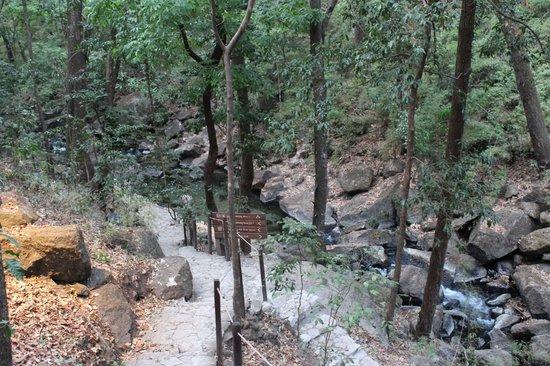 Rio Perdido: Warm-water waterhole and path