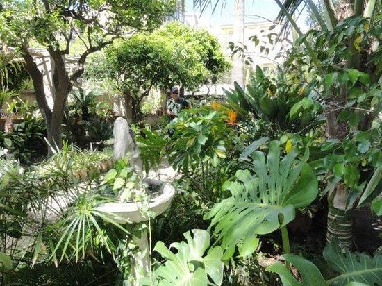 Hotel Villa Schuler: Kleines Gartenparadies hinten beim Hotel.