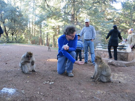 Sahara Desert Crew : Ronnie with the monkies