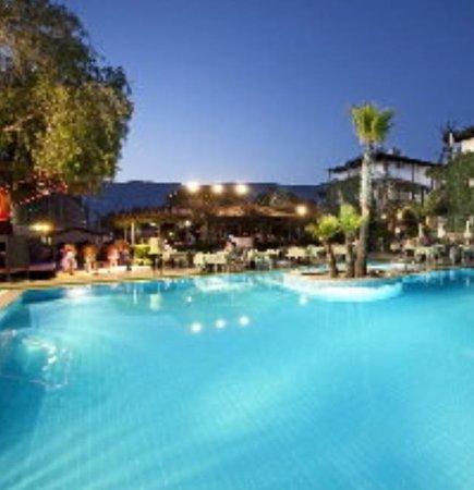 Club Hotel Titan: la piscine