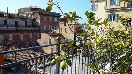 Hotel Ponte Sisto : On the hotel roof