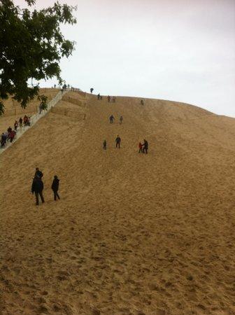 Dune du Pilat : vue d'en bas