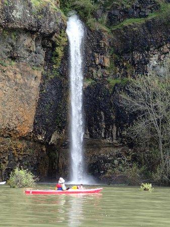 Columbia River Kayaking Day Tours : Spring waterfall