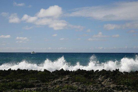 Cocolobo: Waves crashing on the shore